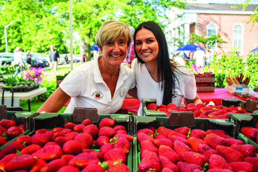 The Saturday's strawberry fest. (Richard Harley/Niagara Now)